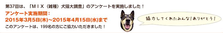 第37回は、「MIX(雑種)犬猫大調査」のアンケートを実施しました!