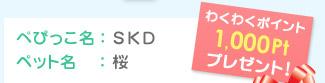 ぺぴっこ名:SKD ペット名:桜 わくわくポイント1,000Ptプレゼント!