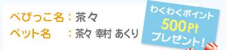 ぺぴっこ名:茶々 ペット名:茶々 幸村 あくり わくわくポイント500Ptプレゼント!