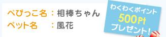 ぺぴっこ名:相棒ちゃん ペット名:風花 わくわくポイント500Ptプレゼント!