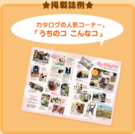 掲載誌例 カタログの人気コーナー。「我が家の主役」 365日違う子に出会える!「ペピイ日めくりカレンダー」
