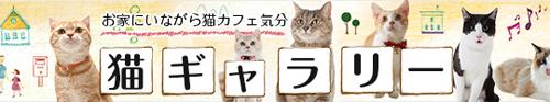 猫ギャラリー