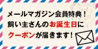 さらに・・・メルマガ会員特典飼い主さんのお誕生日に500円割引のクーポンプレゼント!