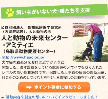 飼い主がいない犬・猫たちを支援 公益財団法人 動物臨床医学研究所(内閣府認可)、人と動物の会 人と動物の未来センター・アミティエ (鳥取県動物愛護センター)