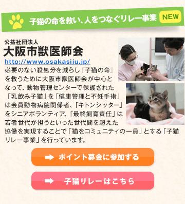 子猫の命を救い、人をつなぐリレー事業 公益社団法人 大阪市獣医師会