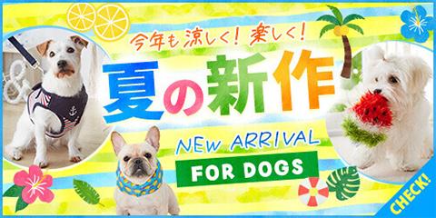 夏の新作 FOR DOGS