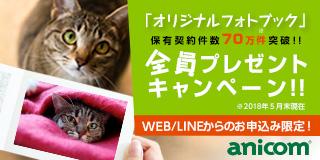 anicom損保 「どうぶつ健保」ふぁみりぃ