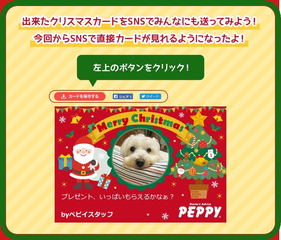 出来たクリスマスカードをSNSでみんなにも送ってみよう!