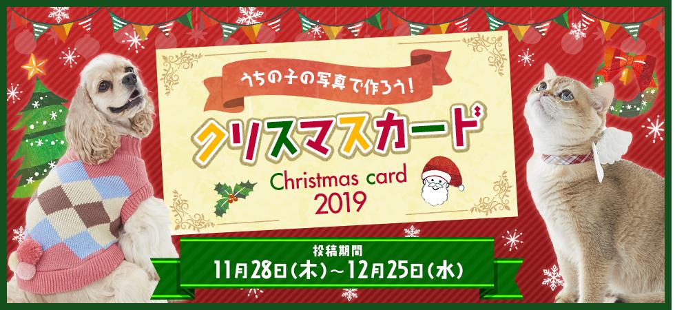 うちの子の写真で作ろう!クリスマスカード2019
