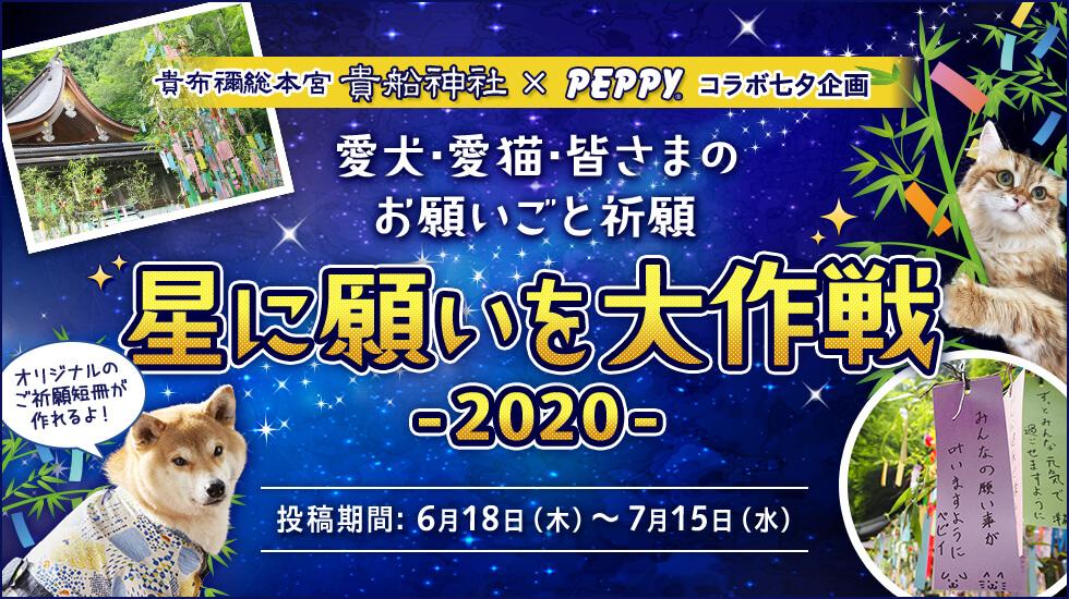 星に願いを大作戦2020