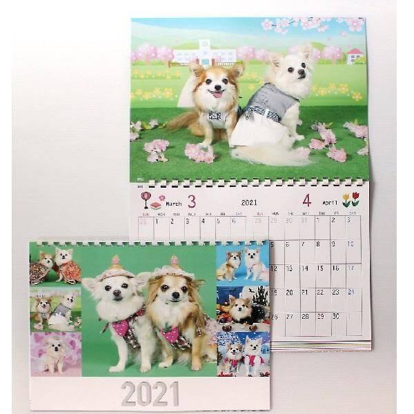 写真で作るうちの子カレンダー2021