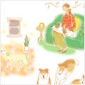 ウォーキングお助けテク 【老犬と暮らす 第6話】