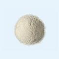 ◆乾燥酵母エビオス