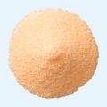 ◆セフテラムピボキシル細粒小児用「日医工」(旧名称:テラセフロン細粒)