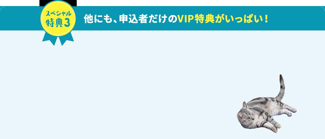 スペシャル特典3 他にも、申込者だけのVIP特典がいっぱい!