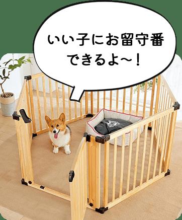 いい子にお留守番できるよ〜!
