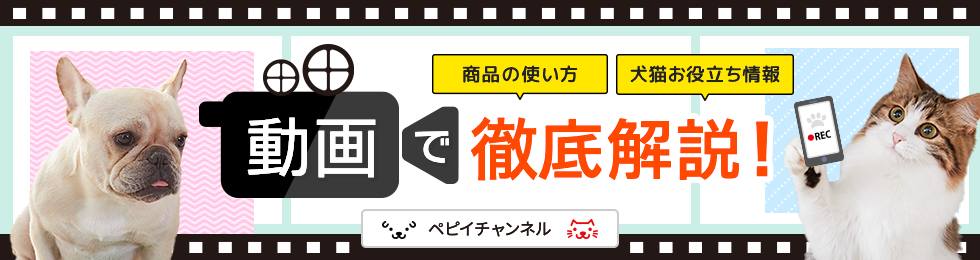 動画で徹底解説!ぺピイチャンネル