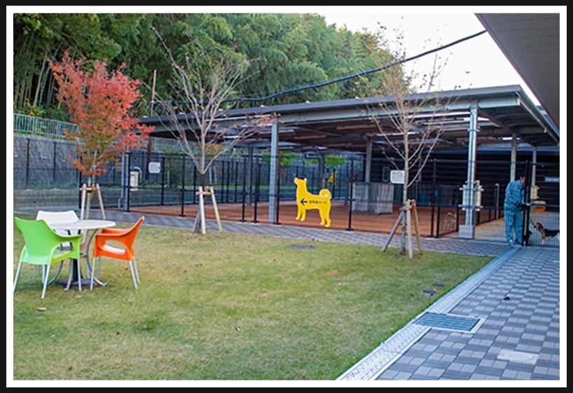 アニマル ハーモニー大阪の運動場