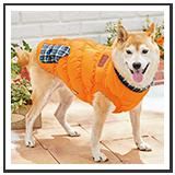 犬用ウェア・レインコート