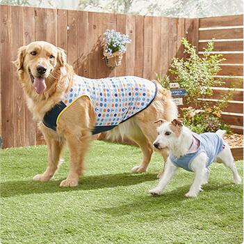 sippole 犬用ウェア