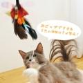 カシャカシャハンター (猫 猫じゃらし おもちゃ)