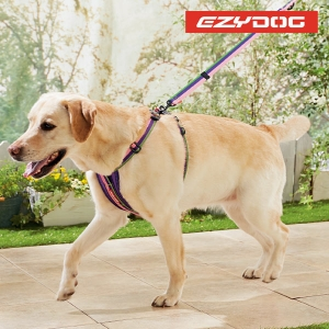 イージードッグゼロショック(犬用リード) レッド・約・長さ64x幅2.5cm【ペット用品】(ペット用品犬しつけ用品)3780/【3780】