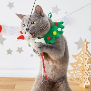 ししゃもねこ クリスマススタイ