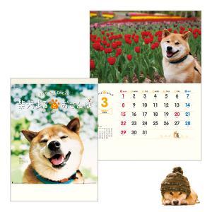 柴犬まるとおさんぽカレンダー2020