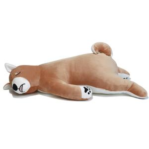 床ごこち 柴犬のタロ