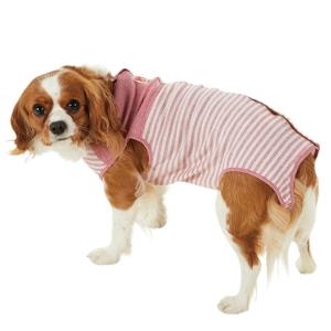 Tピースウェア(女の子用) メープル・8号【ペット用品】(ペット用品犬服)ペット用品  ペットグッズ  ペットフード  ペット  ペピイ  PEPPY  ウェア(犬服)  犬用/【犬・猫の総合情報サイト『PEPPY(ペピイ)』公式通販】