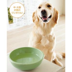 ヘルスウォーターシリーズ ワンボウル (犬用 陶器 食器 ウォーターボウル) XL(約・径24.5x8cm)【ペット用品】(ペット用品犬食器)ペット用品  ペットグッズ  ペットフード  ペット  ペピイ  PEPPY  犬用食器  犬用/【犬・猫の総合情報サイト『PEPPY(ペピイ)』公式通販】