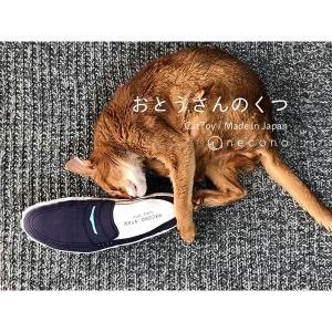 おとうさんのくつ(革靴)