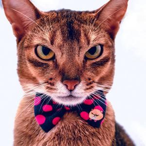 mannine cat リボンネックレス
