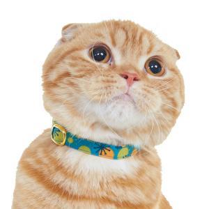 木の実柄 猫首輪
