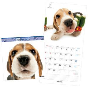 ザ・ドッグ カレンダー2018 キャバリア【インテリア・家具】(インテリア・家具カレンダー)ペット用品  ペットグッズ  ペットフード  ペット  ペピイ  PEPPY  カレンダー  犬用/【犬・猫の総合情報サイト『PEPPY(ペピイ)』公式通販】
