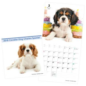 ミニカレンダー2018 キャバリア【インテリア・家具】(インテリア・家具カレンダー)ペット用品  ペットグッズ  ペットフード  ペット  ペピイ  PEPPY  カレンダー  犬用/【犬・猫の総合情報サイト『PEPPY(ペピイ)』公式通販】