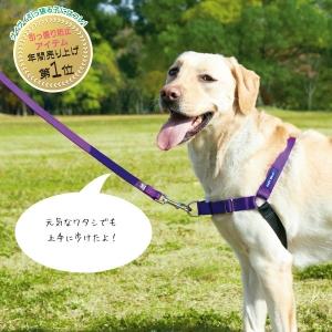 イージーウォーク リード(引っ張り防止用リード) レッド・ML-L(約・長さ124x幅2.4cm)【ペット用品】(ペット用品犬しつけ用品)ペット用品  ペットグッズ  ペットフード  ペット  ペピイ  PEPPY  引っ張りグセ  犬用/【犬・猫の総合情報サイト『PEPPY(ペピイ)』公式通販】