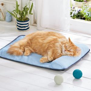 ソフトクールマット・枕付き