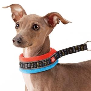 Topcanis(トップカニス) ソフトスリップカラー ターコイズ・約・頭回り28x首回り22-26x幅4cm【ペット用品】(ペット用品犬首輪)ペット用品  ペットグッズ  ペットフード  ペット  ペピイ  PEPPY  犬用首輪  犬用/【犬・猫の総合情報サイト『PEPPY(ペピイ)』公式通販】