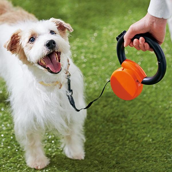 リング ゴー (犬 伸縮リード 小型犬) レッド