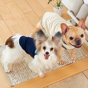SOVO 消臭メッシュタンク (犬 ウェア 服 洋服 小型犬 中型犬 大型犬) ネイビー・M(約・着丈26x首回り26xバスト39cm)【ペット用品】(ペット用品犬服)ペット用品  ペットグッズ  ペットフード  ペット  ペピイ  PEPPY  ウェア  犬用/【犬・猫の総合情報サイト『PEPPY(ペピイ)』公式通販】