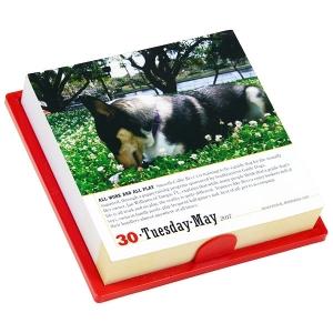 日めくりカレンダー2017犬【インテリア・家具】(インテリア・家具カレンダー)ペット用品  ペットグッズ  ペットフード  ペット  ペピイ  PEPPY  カレンダー  犬用/【犬・猫の総合情報サイト『PEPPY(ペピイ)』公式通販】