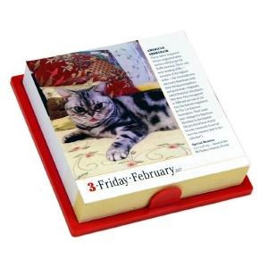 日めくりカレンダー2017猫【インテリア・家具】(インテリア・家具カレンダー)ペット用品  ペットグッズ  ペットフード  ペット  ペピイ  PEPPY  カレンダー  猫用/【犬・猫の総合情報サイト『PEPPY(ペピイ)』公式通販】