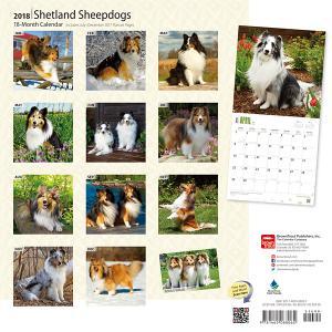 ブラウントラウトカレンダー2018犬 ウィペット【インテリア・家具】(インテリア・家具カレンダー)ペット用品  ペットグッズ  ペットフード  ペット  ペピイ  PEPPY  カレンダー  犬用/【犬・猫の総合情報サイト『PEPPY(ペピイ)』公式通販】