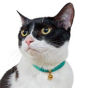 サテンキャラッツ猫首輪