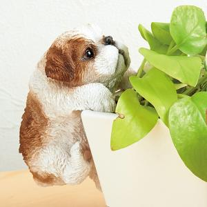ハンギングスモールドッグ シーズー【ペット用品】(ペット用品犬アクセサリー・小物)ペット用品  ペットグッズ  ペットフード  ペット  ペピイ  PEPPY  雑貨  犬用/【犬・猫の総合情報サイト『PEPPY(ペピイ)』公式通販】