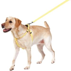 抗菌消臭ワンタッチリード (小型犬 中型犬 大型犬)