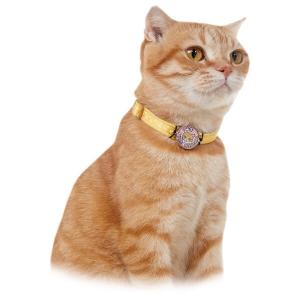 いつも一緒に迷子札&チャーム 巻きつけ猫 サバトラ・パウホワイト 丸・小