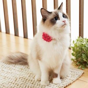 BIRDIE(バーディ) ダリアキャットカラー (猫 首輪) ソーダ・約・首回り17-27x幅1.2cm【ペット用品】(ペット用品猫首輪)ペット用品  ペットグッズ  ペットフード  ペット  ペピイ  PEPPY  猫用首輪  猫用/【犬・猫の総合情報サイト『PEPPY(ペピイ)』公式通販】