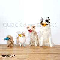 OPPO クァッククローズド